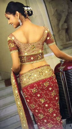 Indian Wedding Dress, Bridal Saree, Designer, Maroon, Border, Rich Embroidery